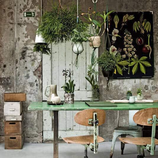 https://www.homeseeds.nl/wp-content/uploads/2016/01/Botanische-woonstijl.jpg