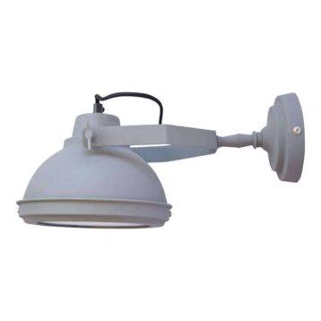 Super vette industriële lamp die zowel aan het plafond als aan de wand bevestigd kan worden | www.homeseeds.nl