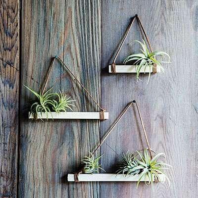 Glazen Plankjes Voor Aan De Muur.9 Leuke Diy Ideeen Voor Luchtplantjes In Huis Homeseeds Nl