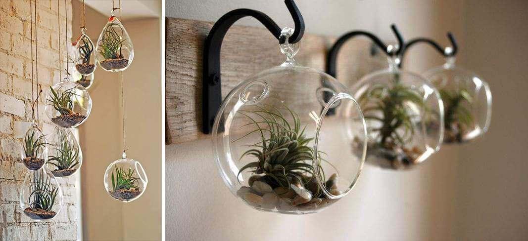 9 leuke diy idee n voor luchtplantjes in huis for Decoratie stuk om te leven
