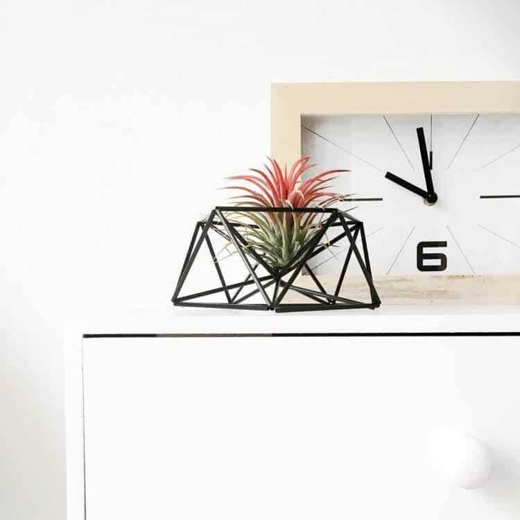 Draadzaken mars table planter himmeli voor in huis   9 tips voor luchtplantjes in huis   www.homeseeds.nl
