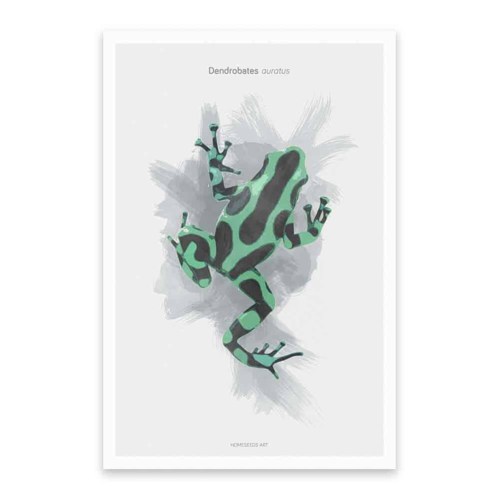 botanische poster groene kikker | www.homeseeds.nl
